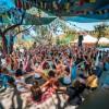 Festival Resized